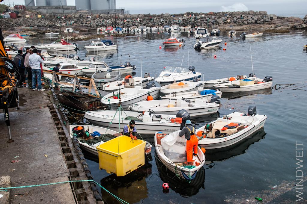 Am Hafen von Upernavik